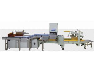Automatic Case Packing Line (HCLX-001)