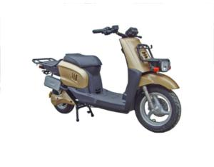 Electric Scooter XFS-H2
