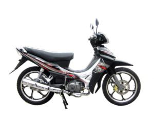 CUB Bike (SKC110-8(IV))