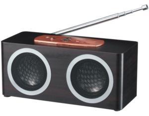 Card Reader Speaker Dl-Smw012fm
