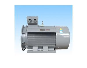 Series Y2 Three-phase AC Induction Motors