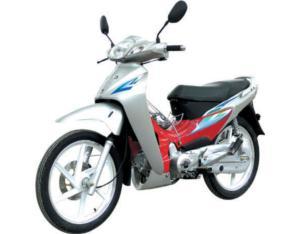 CUB Bike (SKC110-8(V))