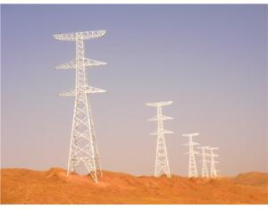 750KV Towers