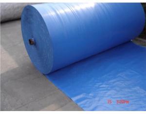 PE Big Roll Materials