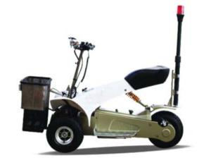 Electric Golf Cart (SX-E0906-6A)