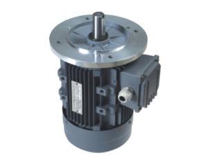 MS series three-phase electriv motor