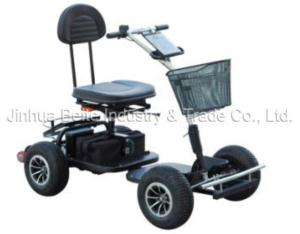 Golf Cart (BTG-01B)