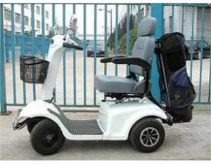 Mobility Scooter / Golf Cart (ES413)