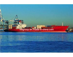 Container Shipping From China to Worldwide