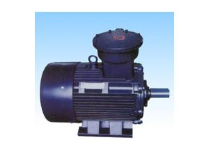 Series YB2(80-315) Three Phase AC Induction Flameproof Motors