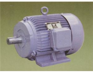 Y Series A.c. Three-plase Induction Motor