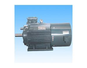 Y2VF Series Three-phase Ac Induction Inverter Duty Motors