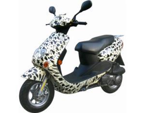 EEC EPA Scooter (LK50QT-21)