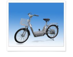Electric Bike (TDL809Z)