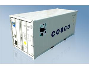 20ft standard reefer container