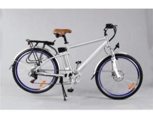 Electric Bicycle (YCEB-7503C)