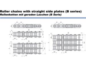 Roller Chains with Straight Sode Plates(B Series)