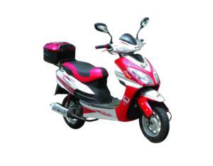 New Model Gas Scooter (JD50QT-9)