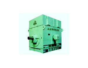 Series YAKK & YAKS High-voltage Increase-safety Three-phase Induction Motors (Frame size: