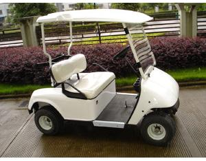 Golf Buggy / Golf Car (ES418GS)