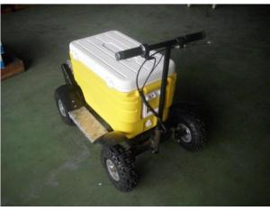 Electric Cooler Scooter CE/EEC/EPA Approved 1000w SX-G110