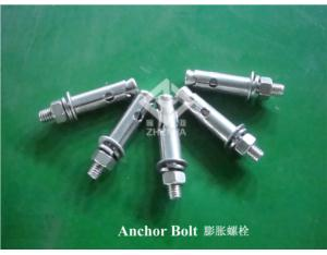 Bolt Anchor