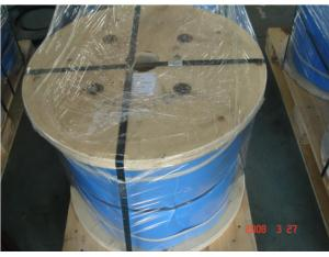 Stainless Steel Wire Rope 1*19
