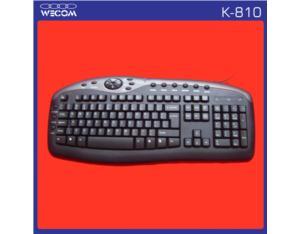 Multimedia Keyboard OEM (K-810)