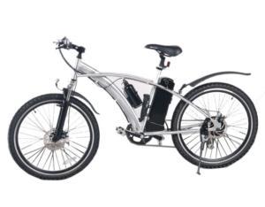 EN15194 Electric Bike  (BTE-011-2A)