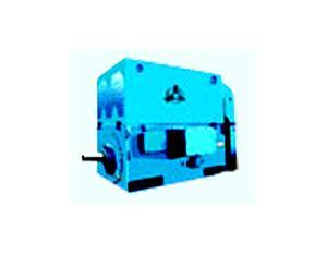 Series Y & YKK & YKS HV Three Phase Induction Motors ( Frame size H355~630 )