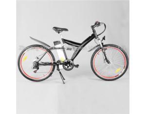 Electric-Bike (YCEB-7508)