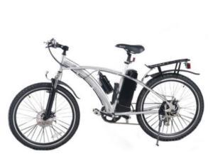 EN15194 Electric Bike  (BTE-011-2B)