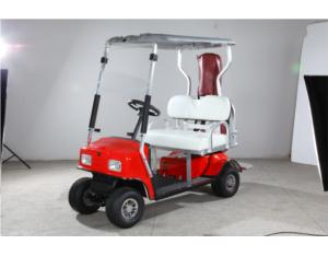 Golf Cart (KAX-A3-6)