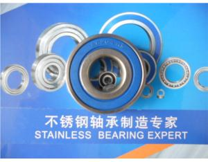 Stainless Steel Bearing (SS6204)