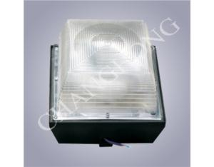 Induction Lamp Ceiling Lamp CHX-002