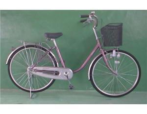 Electric Bike & Parts