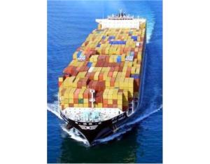 Shipping Container Fm Shanghai to New York/Los Angeles/Long Beach, USA
