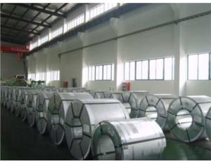 Galvanized Steel Coil-3