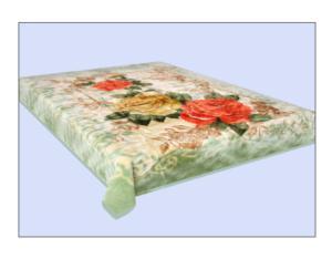 Blanket (189-2)