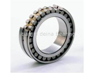 Cylindrical Roller Bearing (SL185010)