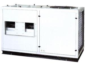 Packageed Roof Top Air Conditioner (WKLF17F)