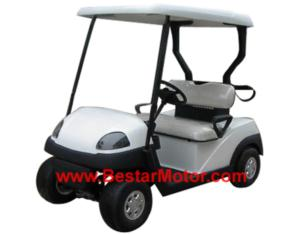 New Style 2-Seater Electric Golf Cart