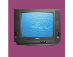 OEM Digital Colour TV (ZD-14B)