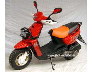 125cc Gas Scooter (YL125T-10)