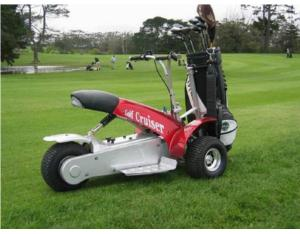 Sport Electric 1000w Golf Kart (SX-E0906-3A)