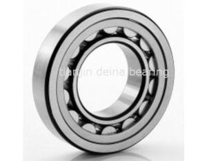Cylindrical Roller Bearing (NJ406)