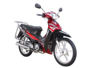 100cc/110cc Lady Motorcycle (BD100-11A-III)