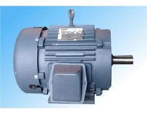 NEMA open type motor