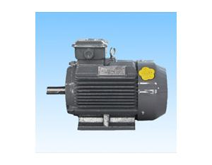Serial Y2KQ(160-355)Three Phase AC Induction Motor for Compressor Application