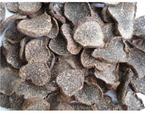 Edible Fungus & Algae